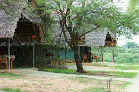 tarangire safari lodge3